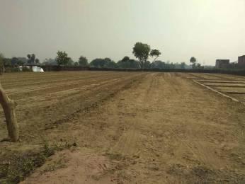 1000 sqft, Plot in Sukriti Sai Yash Residency Faizabad Road, Lucknow at Rs. 15.0000 Lacs