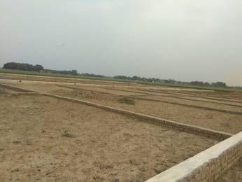1000 sqft, Plot in Builder shine omna Bihta Kanpa Road, Patna at Rs. 6.0000 Lacs