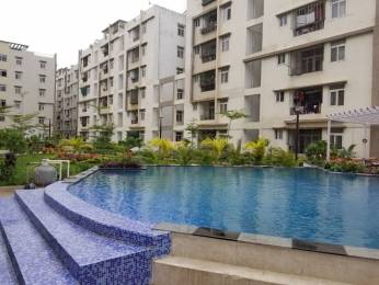 1250 sqft, 2 bhk Apartment in Empire Meadows Miyapur, Hyderabad at Rs. 48.5000 Lacs