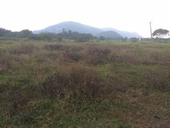 3249 sqft, Plot in Builder APTF housing cooperative society Gunadala, Vijayawada at Rs. 1.0803 Cr