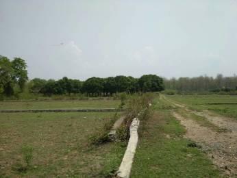 11205 sqft, Plot in Builder Project Dehradun Haridwar Road, Dehradun at Rs. 1.8000 Cr