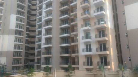 1035 sqft, 2 bhk Apartment in Exotica Dreamville Sector 16C Noida Extension, Greater Noida at Rs. 37.2600 Lacs
