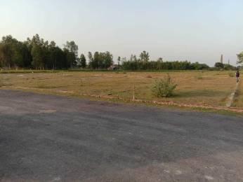 1000 sqft, Plot in Builder Project Rohaniya, Varanasi at Rs. 11.0000 Lacs
