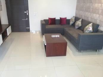 1588 sqft, 3 bhk Apartment in Mona City Sector 115 Mohali, Mohali at Rs. 38.0000 Lacs