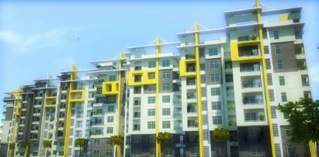 1725 sqft, 3 bhk Apartment in Builder omcon Reign Forest Kommadi Main Road, Visakhapatnam at Rs. 60.3750 Lacs