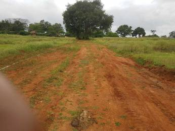 3000 sqft, Plot in Builder Project KRS Road, Mysore at Rs. 42.0000 Lacs