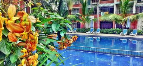 1464 sqft, 3 bhk Apartment in Builder GoGoa villa Candolim, Goa at Rs. 40000