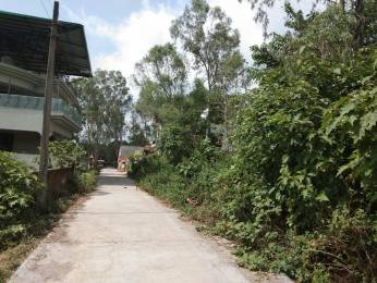 13932 sqft, Plot in Builder Project Dehradun Haridwar Road, Dehradun at Rs. 56.0000 Lacs