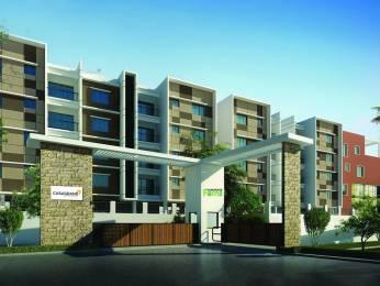 1665 sqft, 3 bhk Villa in Casagrand Bloom Thirumudivakkam, Chennai at Rs. 97.0000 Lacs