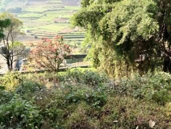 1500 sqft, Plot in Casagrand The Hilltop Phase 1 Vilpatti, Kodaikanal at Rs. 12.7500 Lacs