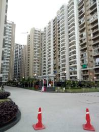 1495 sqft, 3 bhk Apartment in Gulshan Ikebana Sector 143, Noida at Rs. 85.0000 Lacs
