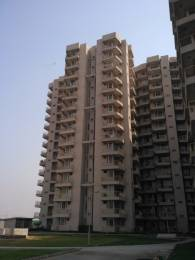 1425 sqft, 2 bhk Apartment in M2K County Heights Sector 5 Dharuhera, Dharuhera at Rs. 23.5000 Lacs