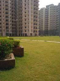 1300 sqft, 2 bhk Apartment in Avalon Rangoli Sector 24 Dharuhera, Dharuhera at Rs. 26.0000 Lacs