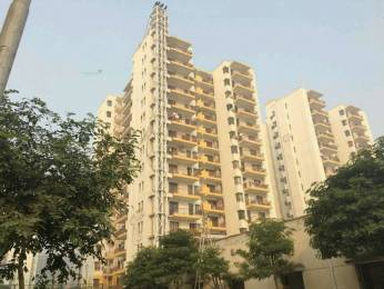 1515 sqft, 3 bhk Apartment in Vipul Gardens Sector 1 Dharuhera, Dharuhera at Rs. 35.0000 Lacs