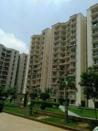 1460 sqft, 3 bhk Apartment in BDI Sunshine City Sector 15 Bhiwadi, Bhiwadi at Rs. 26.8000 Lacs