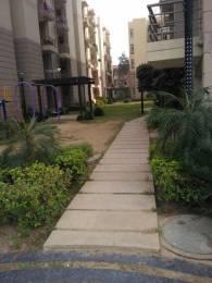 1215 sqft, 3 bhk Apartment in Terra Greens Sector 16 Bhiwadi, Bhiwadi at Rs. 24.0000 Lacs