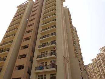 1620 sqft, 3 bhk Apartment in Nimai Greens Sector 22 Bhiwadi, Bhiwadi at Rs. 44.0000 Lacs
