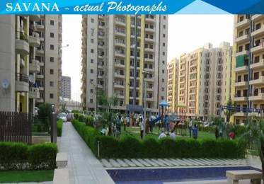 1100 sqft, 2 bhk Apartment in Builder Project Sector 46 Faridabad, Faridabad at Rs. 10000