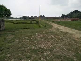2000 sqft, Plot in Builder Ali society Taramandal, Gorakhpur at Rs. 24.0000 Lacs