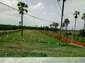 1800 sqft, Plot in Builder tirumala sai nagar phase2 Vijayawada Gudivada Road, Vijayawada at Rs. 15.0000 Lacs