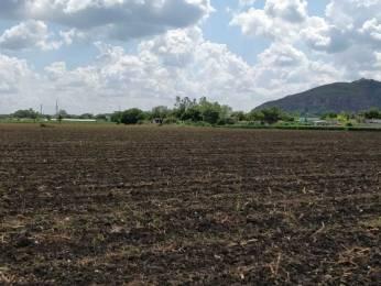 1350 sqft, Plot in Builder venus township Tadikonda, Guntur at Rs. 18.9000 Lacs