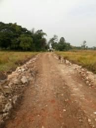 1440 sqft, Plot in Builder Project Joka Road, Kolkata at Rs. 4.0000 Lacs