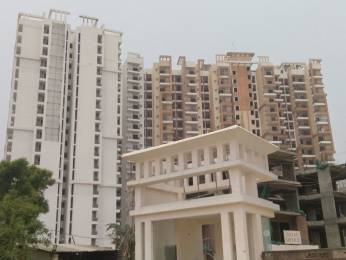 1095 sqft, 2 bhk Apartment in Savfab Jasmine Grove Shastri Nagar, Ghaziabad at Rs. 31.0000 Lacs