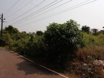 15608 sqft, Plot in Builder Project Road to Divar North Ferry Terminal, Goa at Rs. 2.1700 Cr