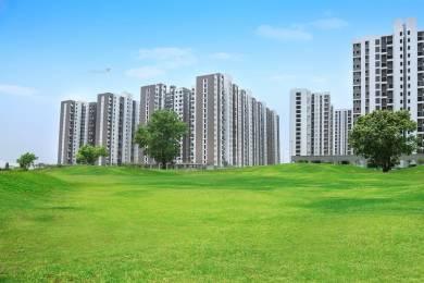 1100 sqft, 2 bhk Apartment in Lodha Palava Milano D G Dombivali, Mumbai at Rs. 69.0000 Lacs