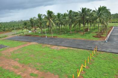 2400 sqft, Plot in Builder Orange residency Pollachi, Coimbatore at Rs. 11.1000 Lacs
