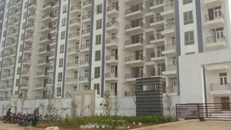 1326 sqft, 3 bhk Apartment in Tulip Tulip White Sector 69, Gurgaon at Rs. 72.0000 Lacs