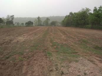 900 sqft, Plot in Builder Project Birsani, Dehradun at Rs. 5.5000 Lacs