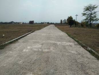 900 sqft, Plot in Builder Project Bhauwala, Dehradun at Rs. 8.0000 Lacs