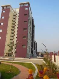 1100 sqft, 3 bhk Apartment in Gini Bellina Lohegaon, Pune at Rs. 20000