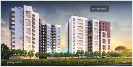 1144 sqft, 3 bhk Apartment in Builder Project Madhyamgram, Kolkata at Rs. 38.8960 Lacs
