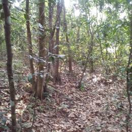 180 sqft, Plot in Builder Project Kinnigoli, Mangalore at Rs. 80000