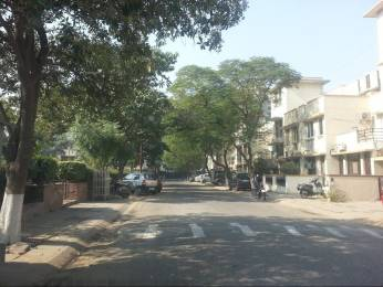 950 sqft, 2 bhk Apartment in Unitech South City II Sector 49, Gurgaon at Rs. 65.0000 Lacs