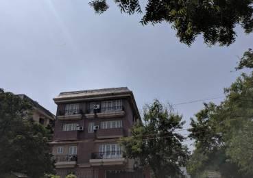 2000 sqft, 3 bhk BuilderFloor in Builder Project Vasant Vihar, Delhi at Rs. 6.5000 Cr