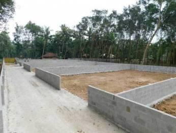 2178 sqft, Plot in Builder Project Chenkottukonam, Trivandrum at Rs. 16.0000 Lacs