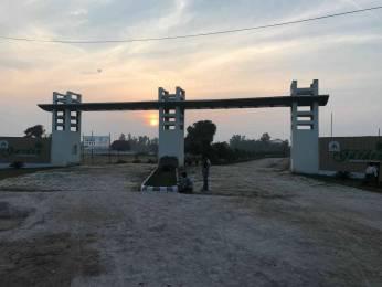 1000 sqft, Plot in Builder Zaire sparkal velly Naini Bridge, Allahabad at Rs. 2.5000 Lacs