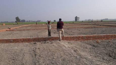 1000 sqft, Plot in Builder tashi Sarnath, Varanasi at Rs. 5.0000 Lacs