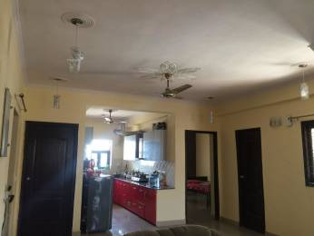 1000 sqft, 1 bhk BuilderFloor in Builder Project 12 Sector A, Panchkula at Rs. 11500