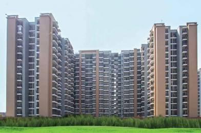 1285 sqft, 2 bhk Apartment in Builder Saviour Park Elite Mohan Nagar, Ghaziabad at Rs. 58.7600 Lacs