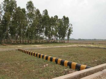 1000 sqft, Plot in Builder Royal residency Faizabad Road, Lucknow at Rs. 2.7550 Lacs