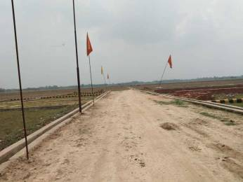 1000 sqft, Plot in Builder Royal residency Faizabad Road, Lucknow at Rs. 2.7500 Lacs
