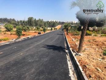 1200 sqft, Plot in Clear Green Valley Plots Bannerghatta, Bangalore at Rs. 33.0000 Lacs