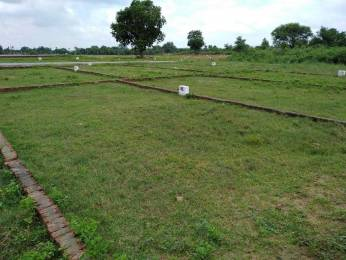 1000 sqft, Plot in Builder Pole Star 2 Kanpur Jhansi Highway, Kanpur at Rs. 6.5100 Lacs