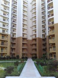 950 sqft, 2 bhk Apartment in Paramount Emotions Sector 1 Noida Extension, Greater Noida at Rs. 36.0000 Lacs
