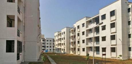 820 sqft, 2 bhk Apartment in TATA New Haven Boisar, Mumbai at Rs. 25.0000 Lacs