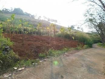363 sqft, Plot in Builder Project Pothencode, Trivandrum at Rs. 18.7500 Lacs